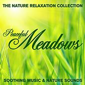 The Nature Relaxation Collection - Peaceful Meadows / Soothing Music and Nature Sounds by Various Artists