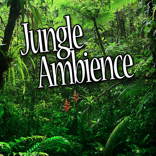 Jungle Ambience (Nature Sounds) by The Atmosphere Collection