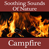 Soothing Sounds Of Nature - Campfire by Dr. Sound Effects SPAM
