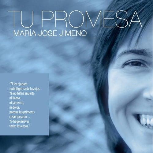 Tu Promesa-pistas by Maria Jose Jimeno