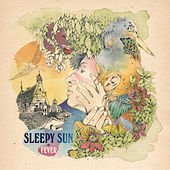 Fever by Sleepy Sun