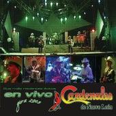 Sus Más Recientes Éxitos: En Vivo Gira 2005 by Cardenales De Nuevo León