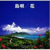 Shima Uta Hana by Music Box Collection