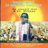 Concert Live à Saint-Etienne by Ismaël Isaac