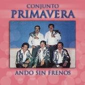Ando Sin Frenos by Conjunto Primavera