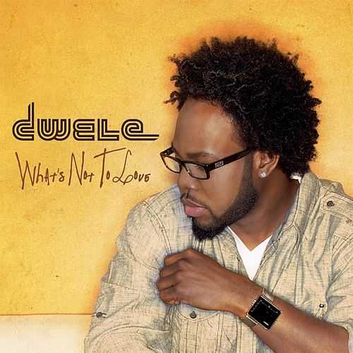 What's Not To Love by Dwele