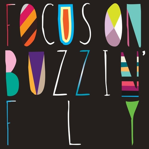 Focus On : Buzzin' Fly Mixed by Chris Woodward by Various Artists