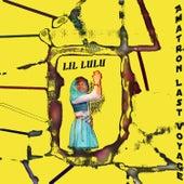 Amatron Last Voyage by LiL LuLu