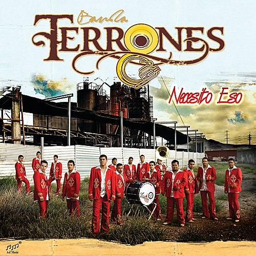 Necesito Eso by Banda Terrones