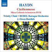 Haydn: Masses, Vol. 2 - Mass No. 3,