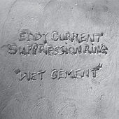 Wet Cement by Eddy Current Suppression Ring