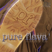 Pure Gospel - Pure Flava' by Various Artists