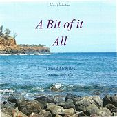 A Bit Of It All by David Morales