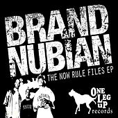 The Now Rule Files von Various Artists