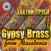 Gypsy Brass From Macedonia (Zlatni Trubi) by Various Artists