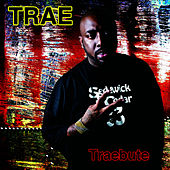 Traebute by Trae