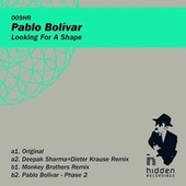 Looking For A Shape - EP by Pablo Bolivar