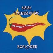 Eggs Teenbeat 96 Exploder by Eggs