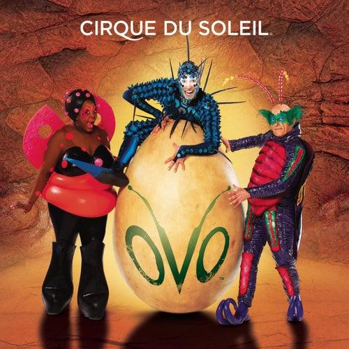 Ovo by Cirque du Soleil
