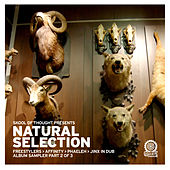 Natural Selection Album Sampler Pt 2 by Various Artists