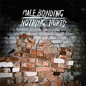 Nothing Hurts by Male Bonding