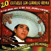 20 Exitazos by Cornelio Reyna