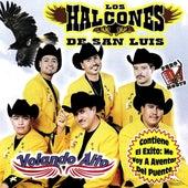 Volando Alto by Los Halcones De San Luis