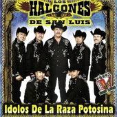 Idolos De La Raza Potosina by Los Halcones De San Luis