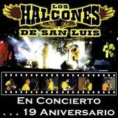 En Concierto...19 Aniversario by Los Halcones De San Luis