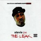 The Leak by Stevie Joe
