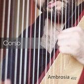 Ambrosia 432 by Corso