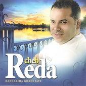 Rani Aliha Ghadi Jaye by Cheb Reda