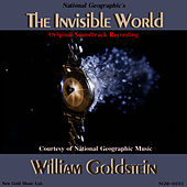 The Invisible World by William Goldstein