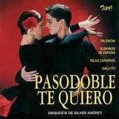 Pasodoble, Te Quiero by Orquesta de Silver Andrey