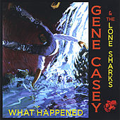 What Happened by Gene Casey