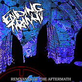 Remnants Of The Aftermath by Ending Tyranny