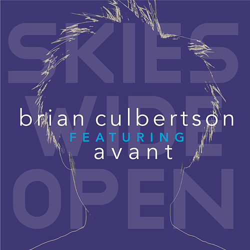 Skies Wide Open by Brian Culbertson