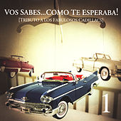 Tributo A Los Fabulosos Cadillacs by Various Artists