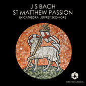 Bach, J.S.: St. Matthew Passion by Eamonn Dougan