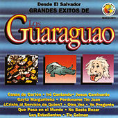 Grandes Exitos by Los Guaraguao