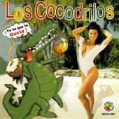 Yo Se Que Te Gusta by Cocodrilos