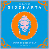Siddharta, Spirit of Buddha - Bar, Vol. 5: Budapest (by Ravin) by Various Artists