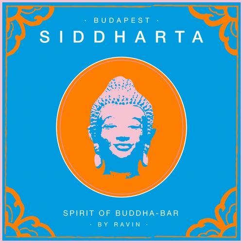 Siddharta, Spirit of Buddha - Bar, Vol. 5: Budapest (by Ravin) by Various Artists