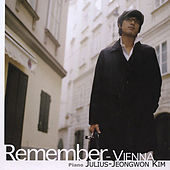 Remember - Vienna by Various Artists
