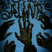 Salinas by Salinas
