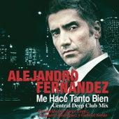 Me Hace Tanto Bien by Alejandro Fernández