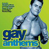 Almighty Presents: Gay Anthems 2 by Various Artists