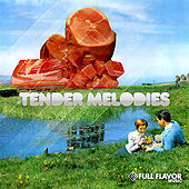Tender Melodies by Various Artists