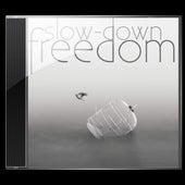 Freedom by Slowdown