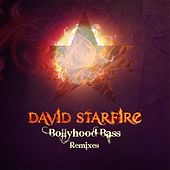 Bollyhood Bass Remixes by David Starfire